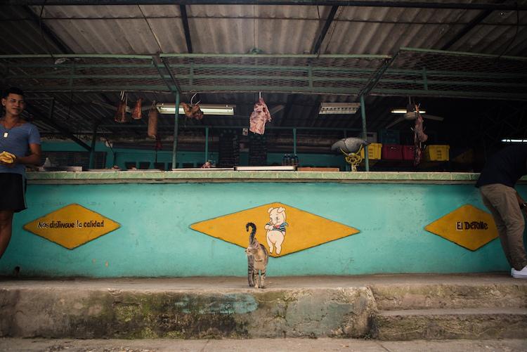 Advent-Films-Cuba-10