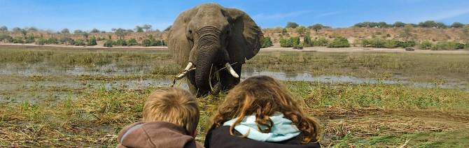 africa-botswana-chobe-national-park-elephant-and-kids_ltl2