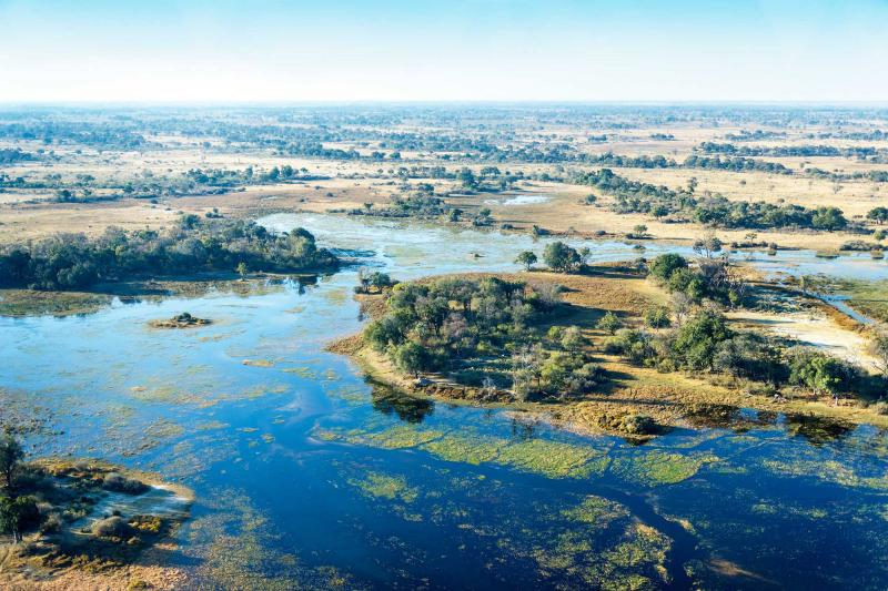 africa_botswana_okavango_delta_view_grassland