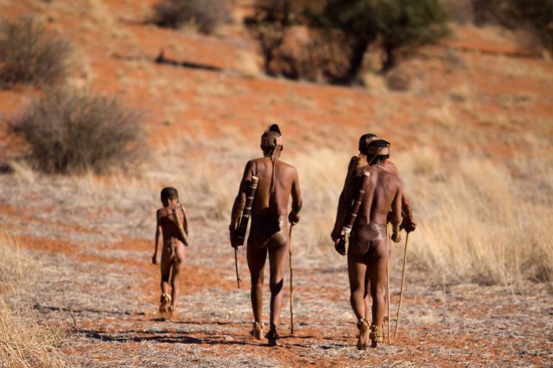africa_namibia_san_bushmen_family_show_people_how_they_live_in_the_kalahari_desert_in_namibia_walking-e
