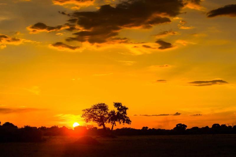 beautiful_sunset_over_the_okavango_delta_okavango_grassland_one_of_the_seven_natural_wonders_of_africa_botswana_0