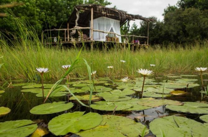 botswana-selinda_camp42