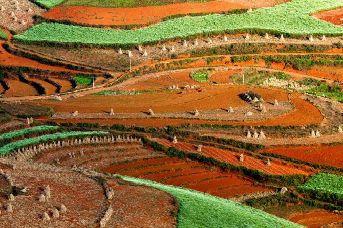 china-yunnan-dongchuan-red-landscape-detail-shot