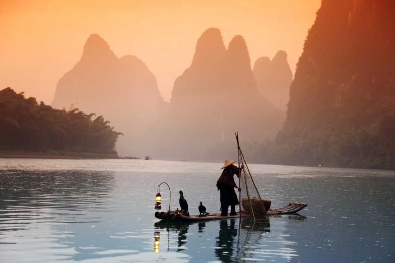 china_chinese_man_fishing_with_cormorants_birds_yangshuo_guangxi_region_traditional_fishing_use_trained_cormorants_to_fish