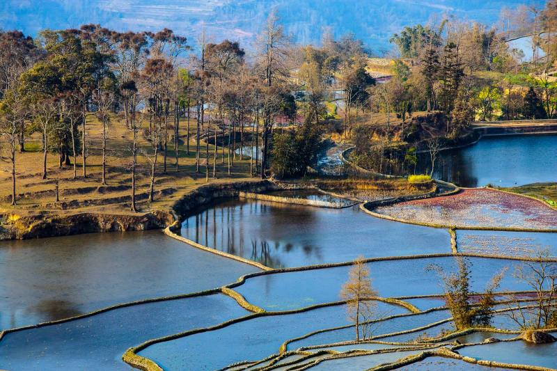 china_rice_terraces_in_yuanyang_district_yunnan_province_1