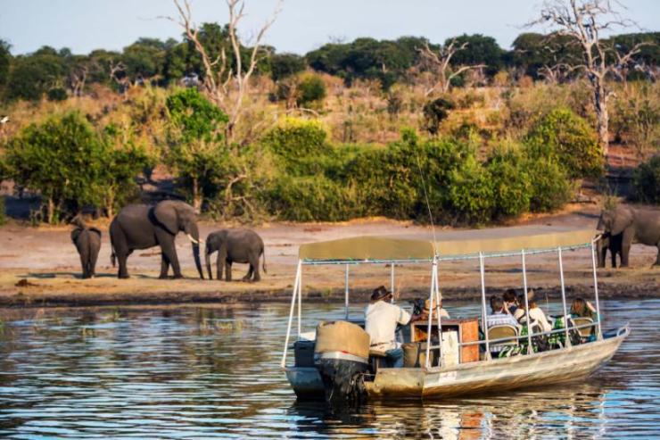 chobe_river_botswana_-_june_10th_2015_-_tourists_in_a_speedboat_observing_elephants_in_the_river_side_in_the_chobe_river_botswana_africa_0