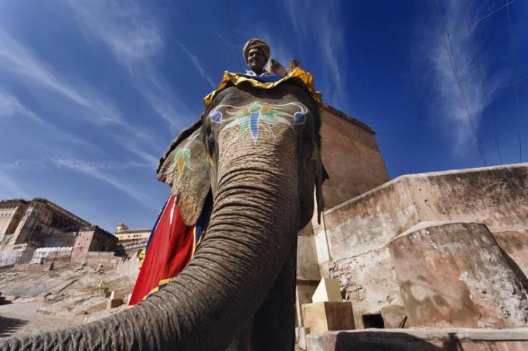 india-rajasthan-jaipur-amber-fort-painted-elephant