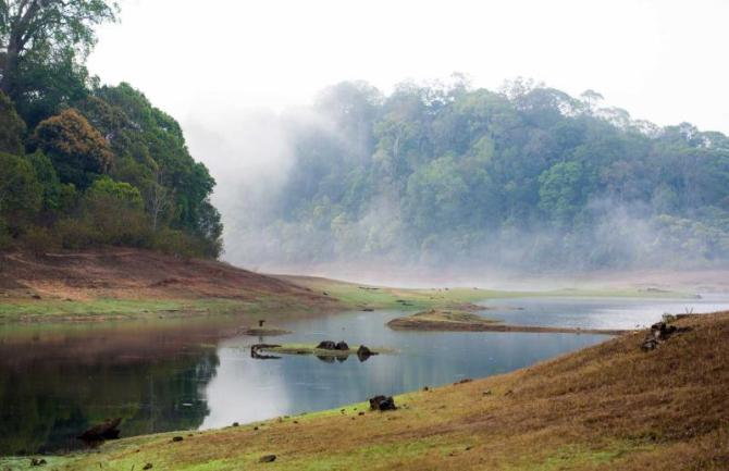 india_lake_view_periyar_national_park_kerala