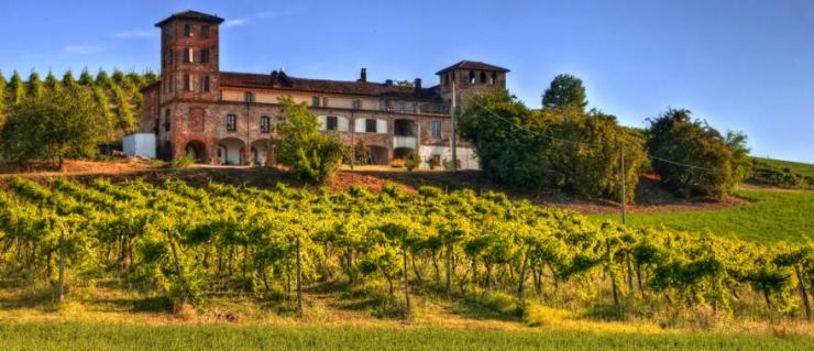 italy-piedmont-langhe-winery-view-header