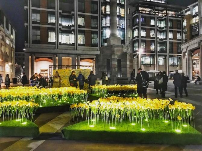 marie-curie-greyworld-garden-of-light-daffodil-installation-8