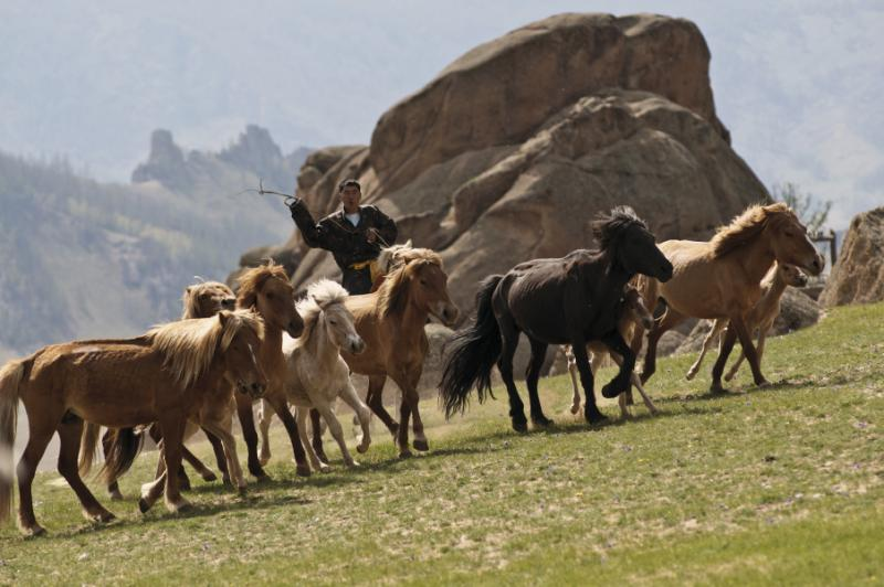 mongolia_horse_riding_demonstration_roland_jung_-_x