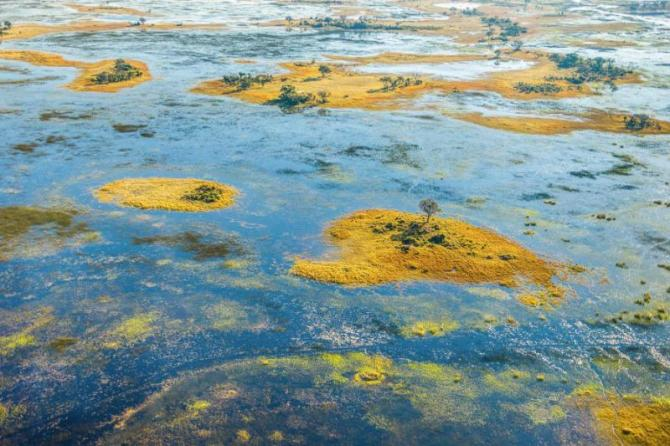 okavango_delta_okavango_grassland_is_one_of_the_seven_natural_wonders_of_africa_view_from_the_airplane_-_botswana_south-western_africa_0