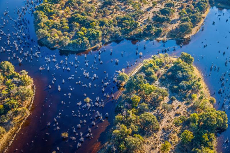 okavango_delta_okavango_grassland_is_one_of_the_seven_natural_wonders_of_africa_view_from_the_airplane_-_botswana_south-western_africa_1