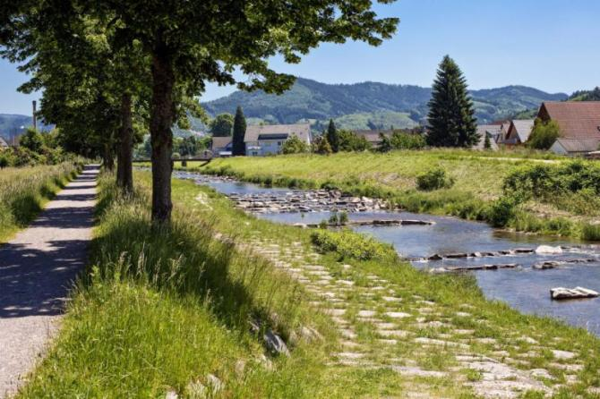river_rench_in_oberkirch_ortenau_black_forest_germany