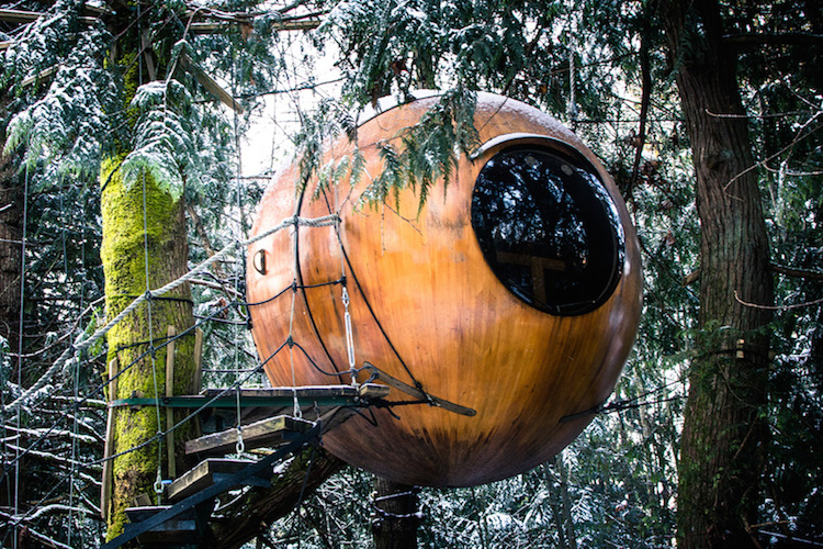 spherical-tree-houses-free-spirit-treehouse-4