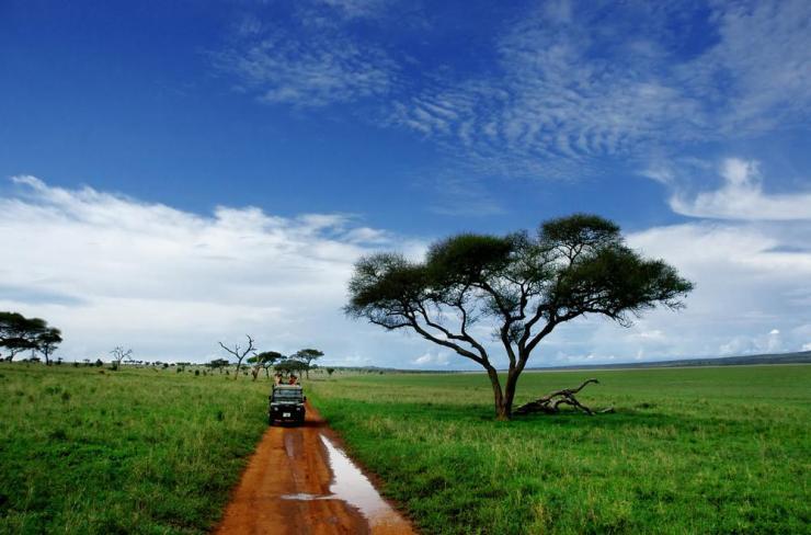 Tanzania_Tarangire_NP_Tour_Safari_Tour_-_Bobby_Tours