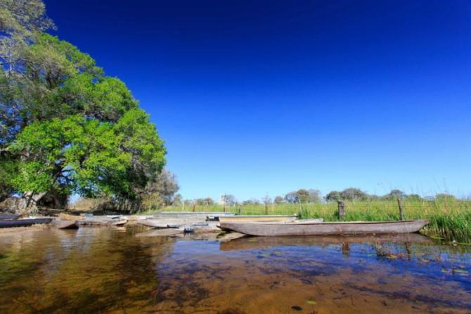 traditional_mokoro_canoe_in_the_okavango_delta_maun_botswana._the_mokoro_boat_is_the_main_form_of_transport_on_the_okavango_river_view_0