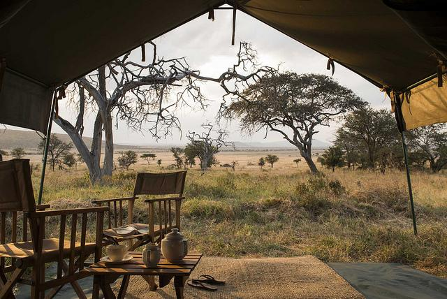 africa-serengeti-_safari_camp-_tent_view_1