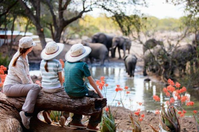 africa-south_africa_family_by_the_pool_wacthing_elephants_kids