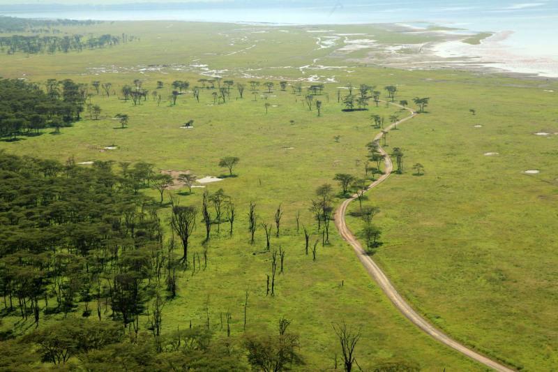 africa_kenya_lake_nukuru_national_park