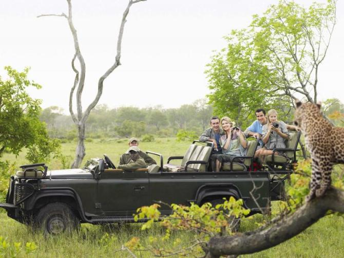 africa_south_africa_kruger_side_view_of_tourists_in_jeep_looking_at_cheetah_lying_on_log