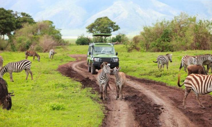 africa_tanzania_ngorongoro_safari_car_on_game_drive_with_animals_around_0
