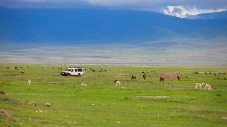 africa_tanzania_ngorongoro_safari_car_on_game_drive_with_animals_around_copy