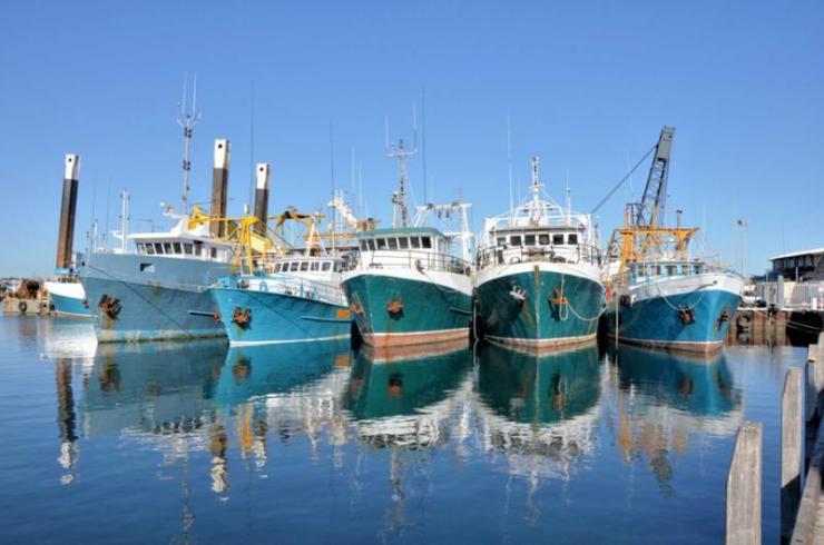 australiaperthtourfishingboatsinaharbour