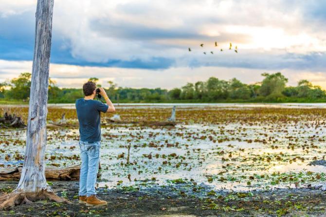 brazil-pantanal-wetlands-tourist-photographershutterstock