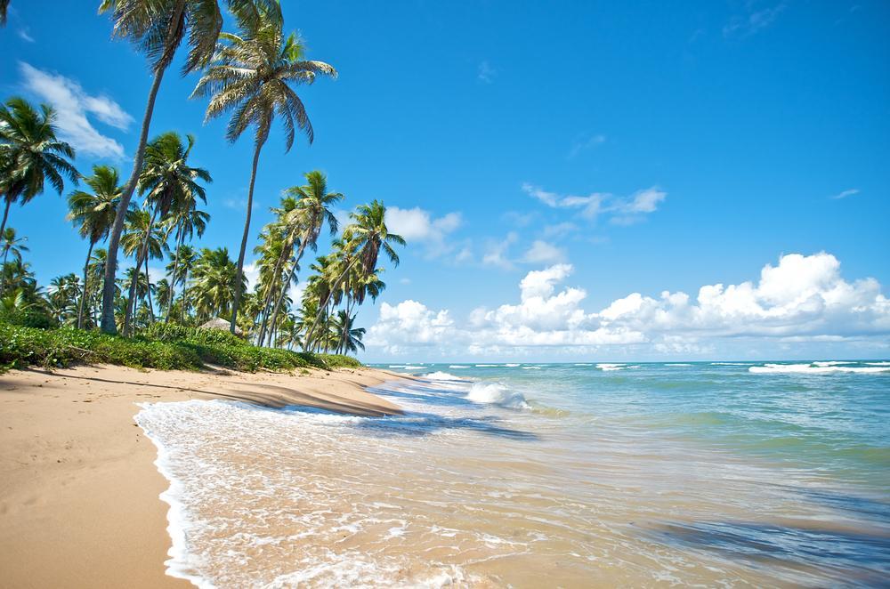 Brazil-Paradise-Beach-Praia-do-Forte-SalvadordeBahia-1