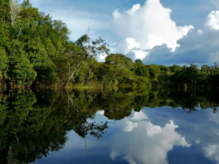 Brazil_Amazon_River_Tour_Reflection_of_Amazon_-123
