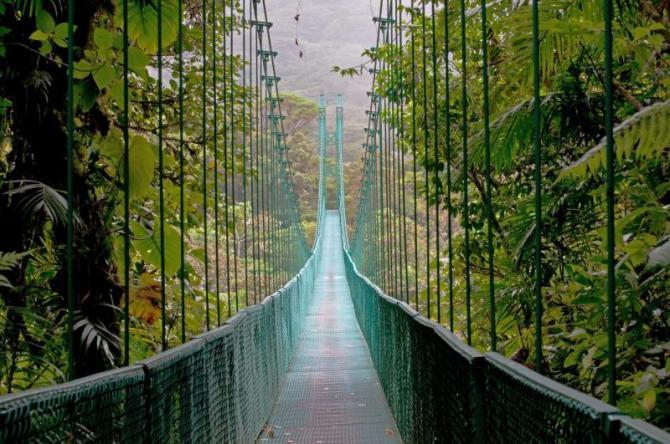 costa_rica_monteverde_cloud_forest_hanging_bridge