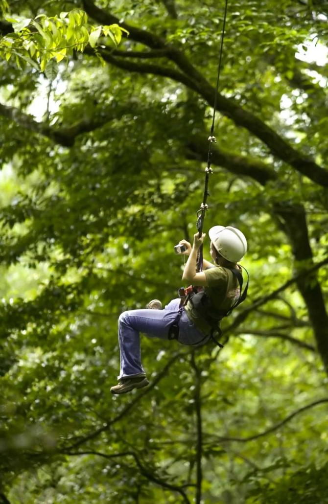 costa_rica_zip_line_in_costa_rican_jungle_closeup