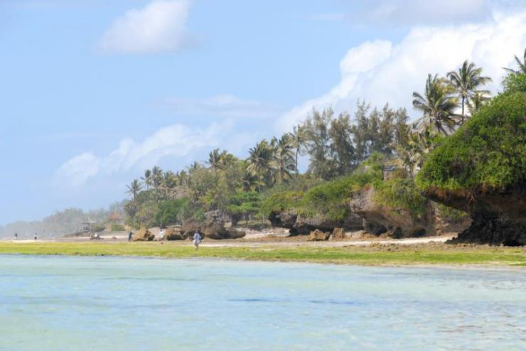 kenya_mombasa_tour_low_tide