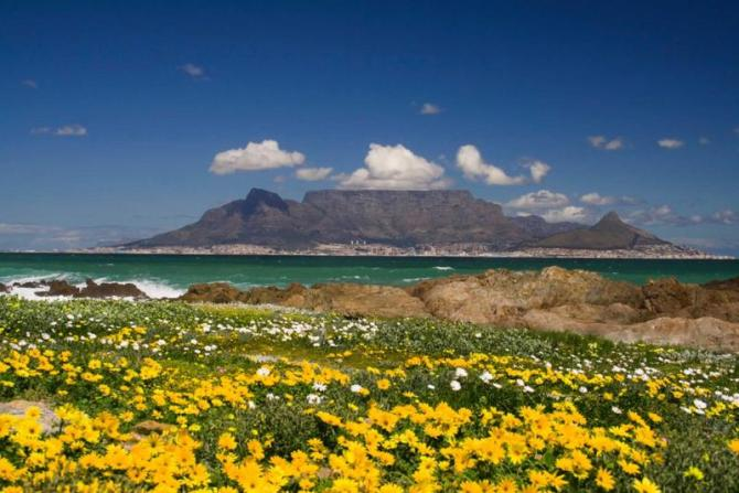 south_africa_cape_town_tour_table_mountain-12