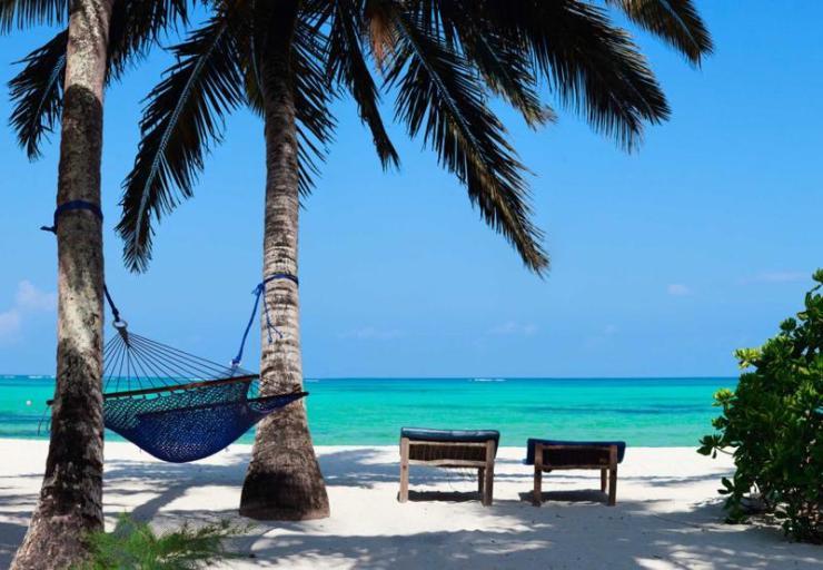 tanzania_zanzibar_tour_hammock_tropical_beach_0