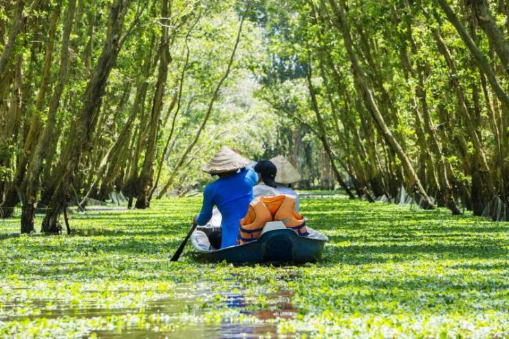 thailand_an_giang_woman_rowing_in_the_tra_su_flooded_forest_mekong_delta