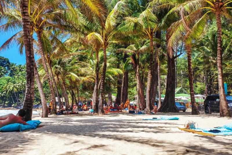 thailand_phuket_tourists_sunbathing_on_sand_of_surin_beach_in_shade_of_palms_e_0